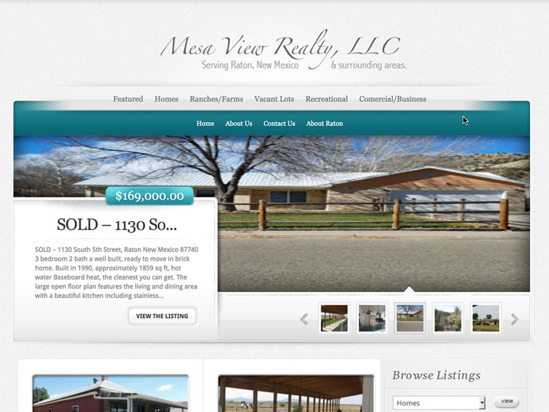 Mesa View Realty Website Design Raton NM