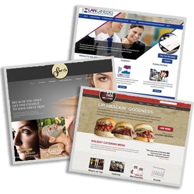 Website Design Web Designer